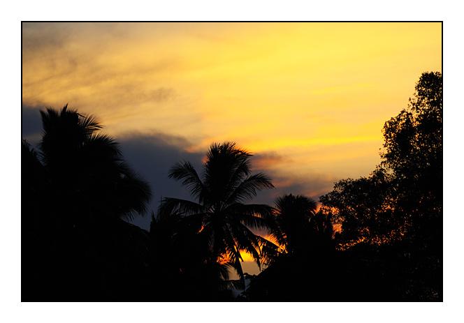 http://cp5700.free.fr/D300/malaisie_2008/DSC_0572-r.jpg